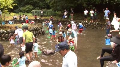清流美山の鮎祭り