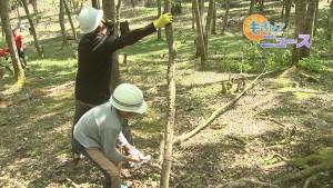 島津製作所の森づくり活動00000000