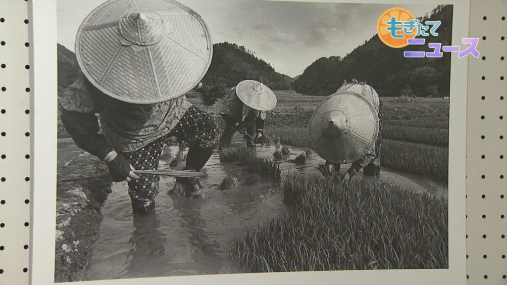 日吉町郷土資料館 開館20周年特別展 日吉ダムのあゆみ 川とともに暮らした人びと