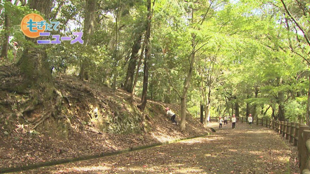 城南保育所5歳児春の園外保育 忍者になりきり山で楽しむ